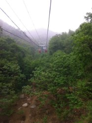 scenery on the cable car