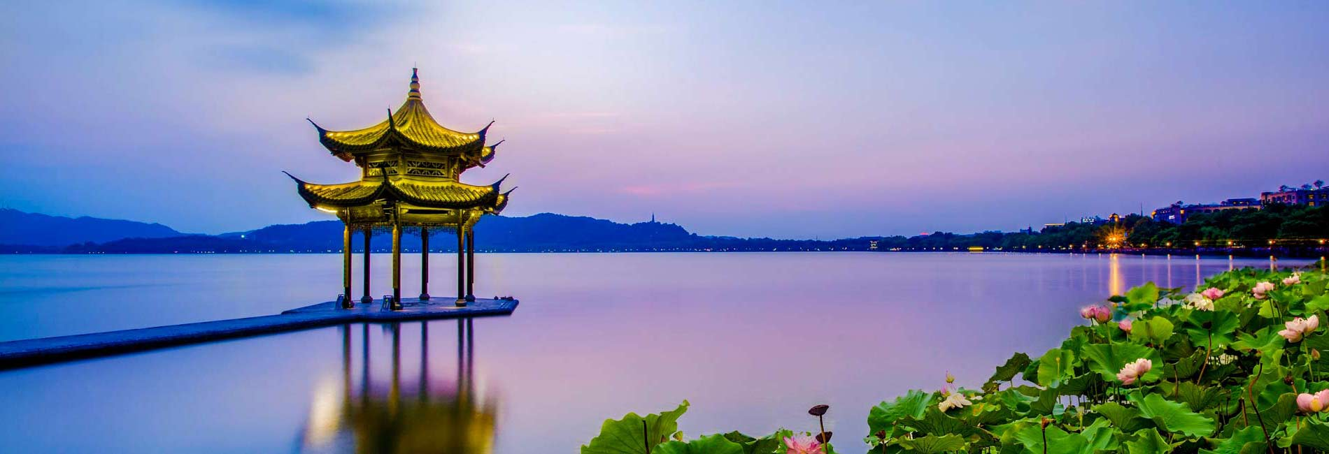 hangzhou West Lake longjing Tea Tours